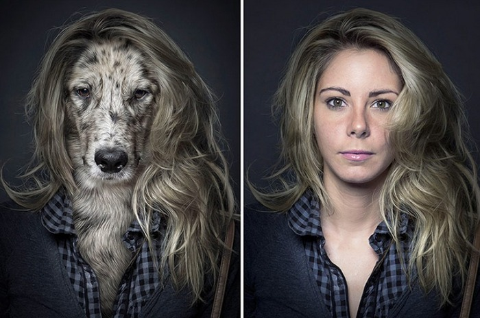 dogs-look-like-owners-3